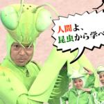 香川照之の昆虫番組!2018放送日・放送時間・再放送は?マレーシア編放送内容も!