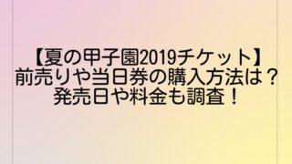 【夏の甲子園2019チケット】前売りや当日券の購入方法は?発売日や料金も調査!